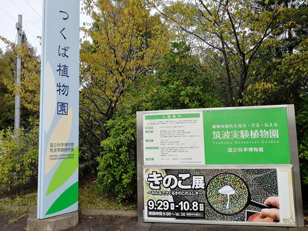 きのこ展@つくば実験植物園
